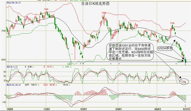 图9:豆油日K线走势图(来源:文华财经)